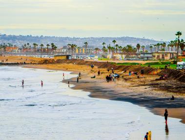 people enjoying lush beach